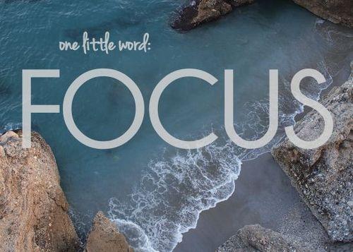 Focus550