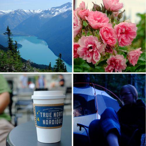 Whistler-collage