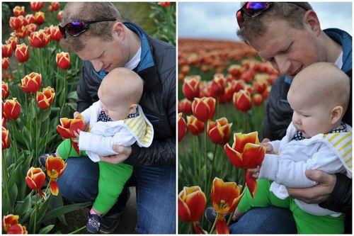 April 27 Tulips-004