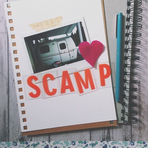 Scamp instagram