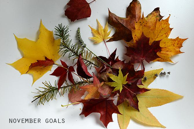 7 Goals for November
