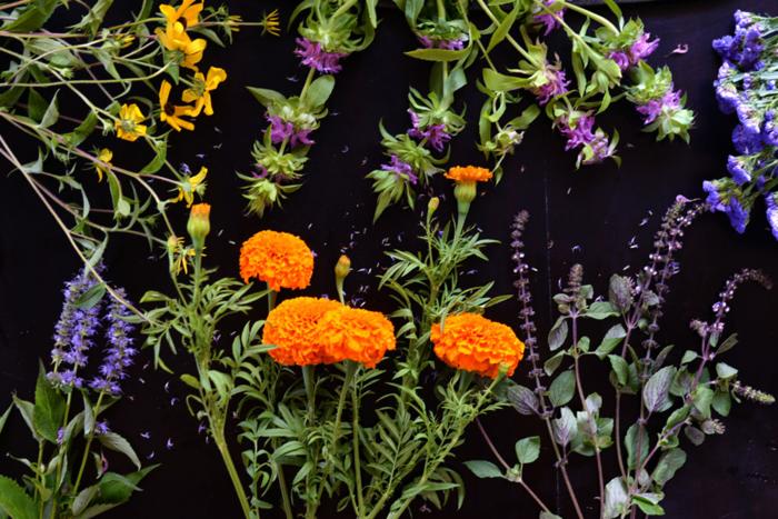 Flower-Deconstruction