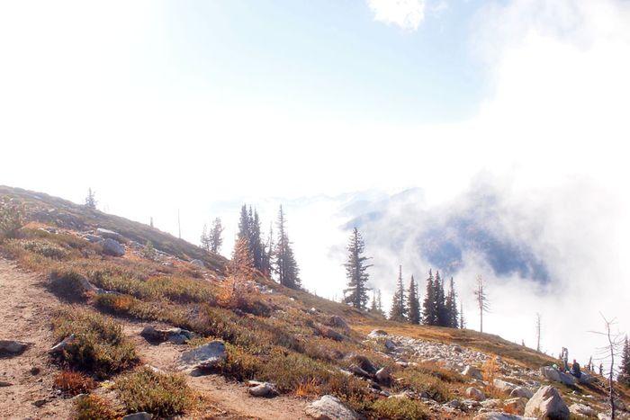 Foggy-hike