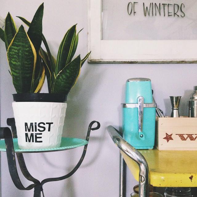 Mist Me